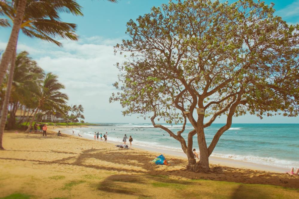kauai-4058